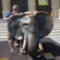 Ja isłoń przedNaturhistorisches Museum