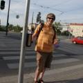 Ja naliniach prowadzących doświateł iprzejścia dla pieszych