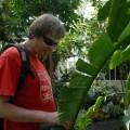 Podziwiam liście palmy